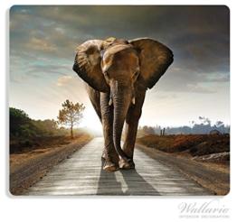 Herdabdeckplatte aus Glas, 1-teilig, 60x52cm, für Ceran- und Induktionsherde, Elefant bei Sonnenaufgang in Afrika -